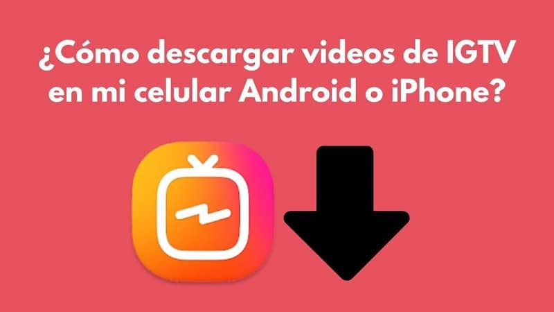 Come scaricare i video IGTV sul mio cellulare Android o iPhone?